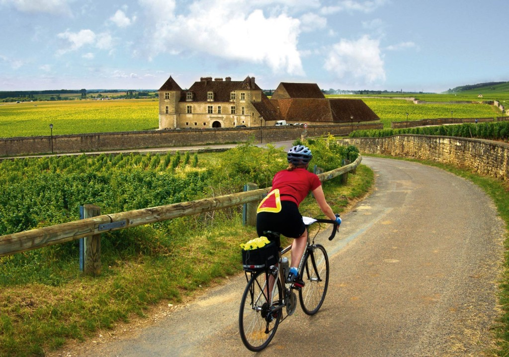 Burgundy bicycle tours