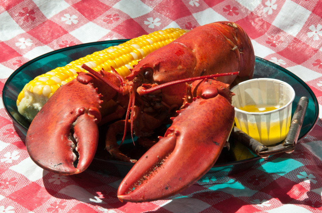 Maine lobster meal on Maine Bicycle Tour